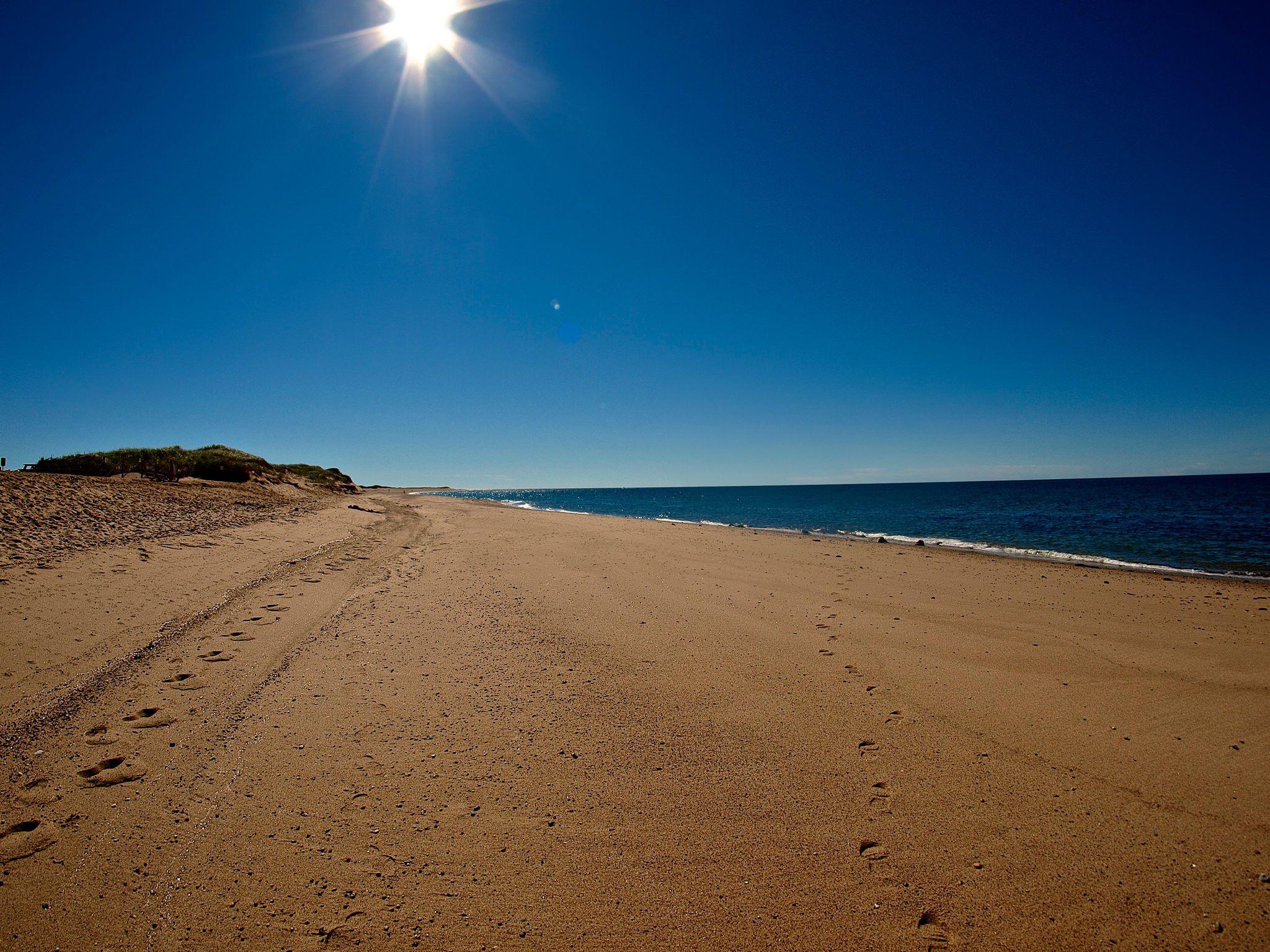 Cape Codd