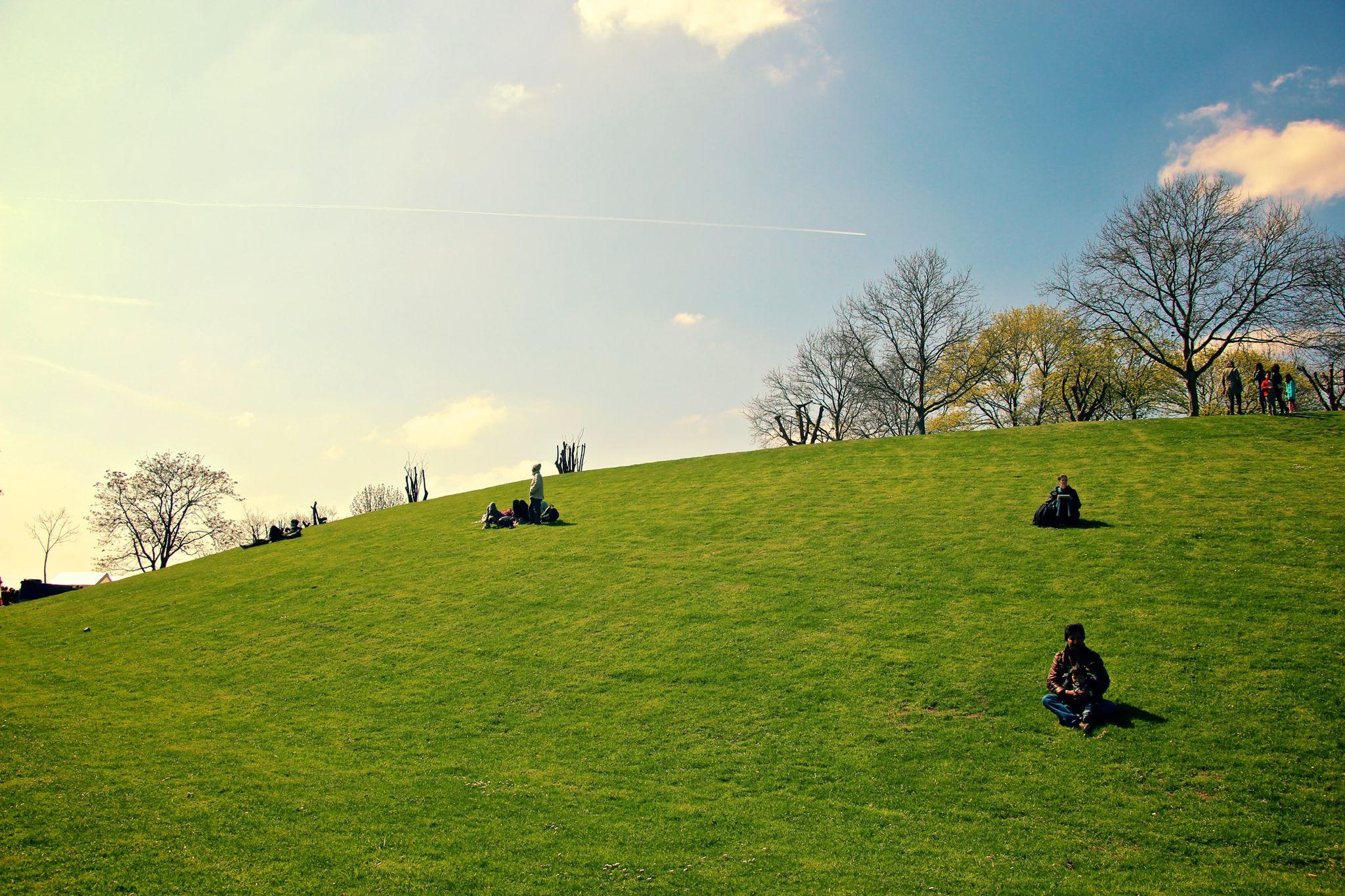 Spring in Bonn