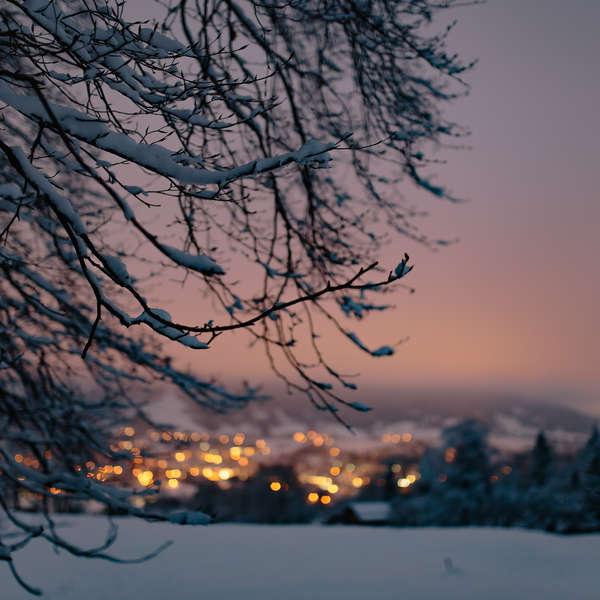 snowy-eve-00003-1506d074e7ac5d62636e58421b494fb8