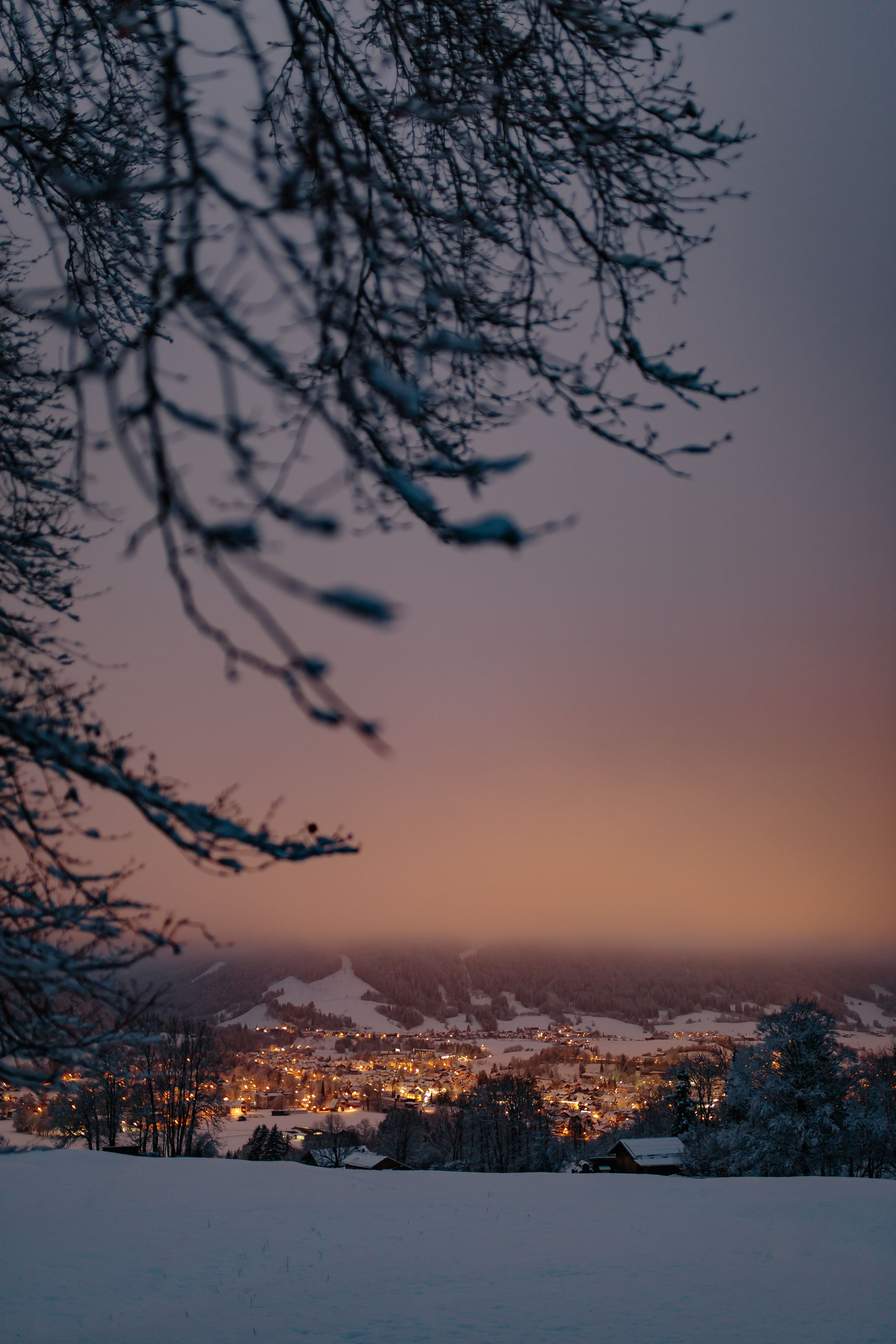 Snowy Eve